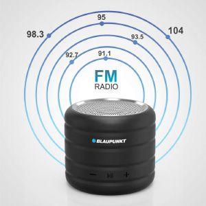 Inbuilt Blaupunkt FM mode