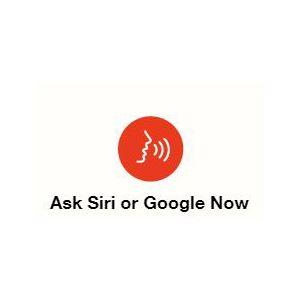 activate voice assistant