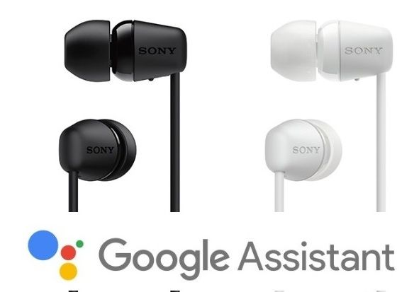 supports voice assistant
